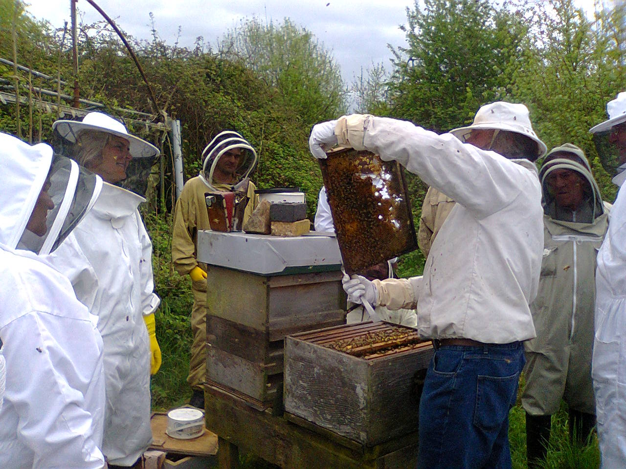 1st.apiary meeting.2015 003