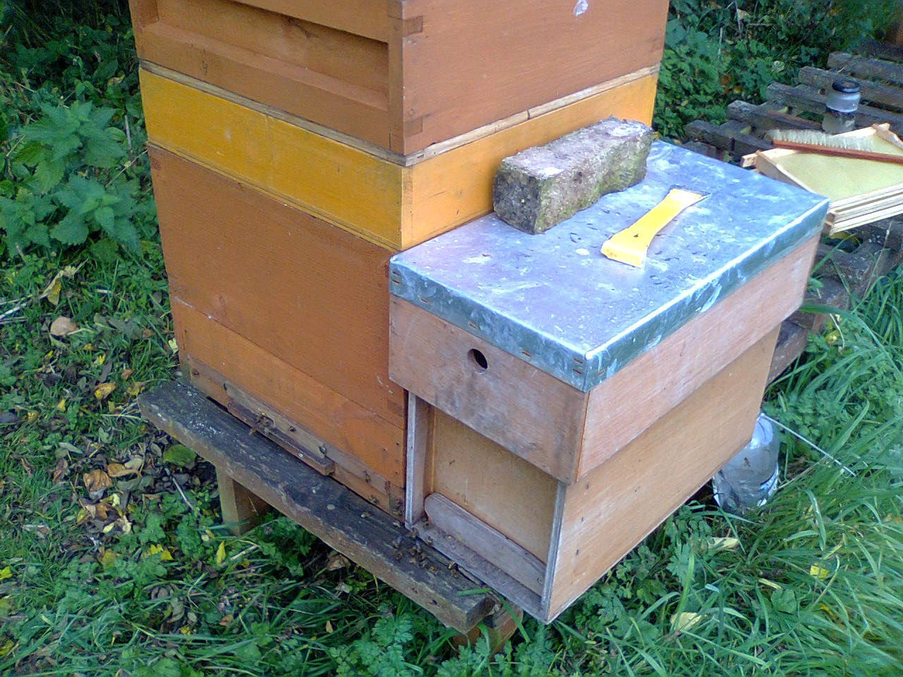 No 7 swarm and nuc timber 001