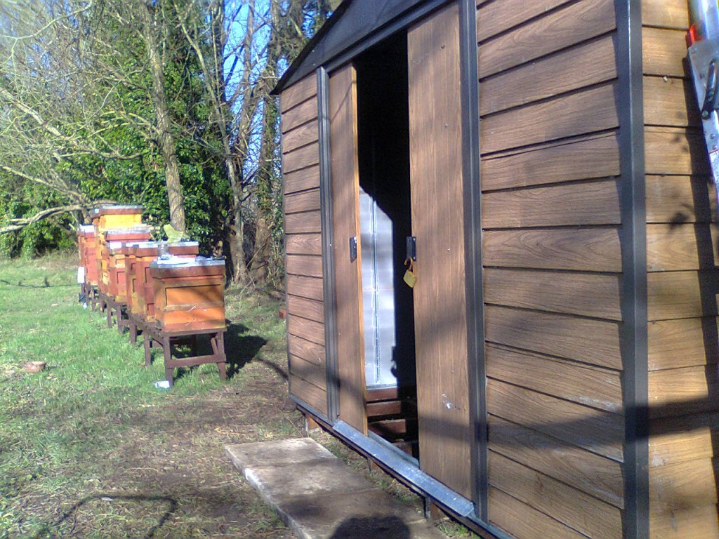 shed roof completed 001