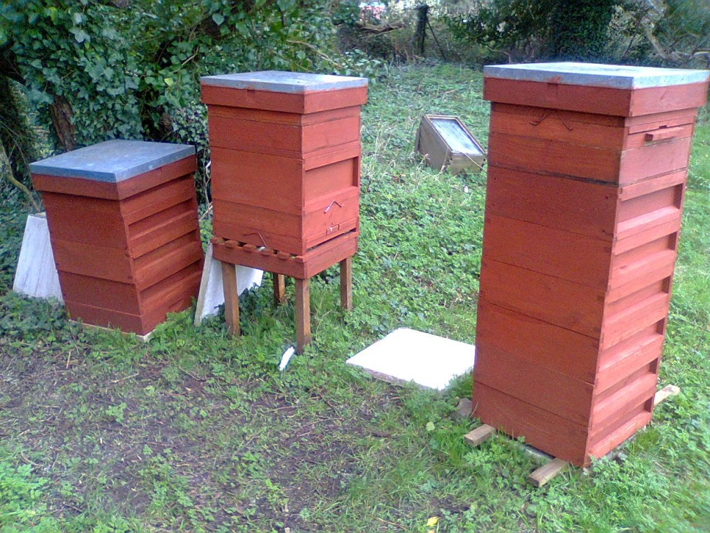 fresh cuprinol all station hives 001